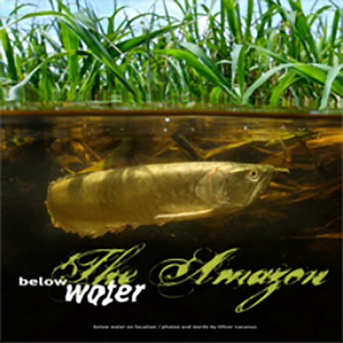 (열대어책) Below water fish book _Oliver Lucanus